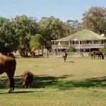australia-lavoro-farm