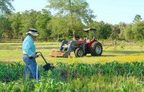 coltivatori diretti